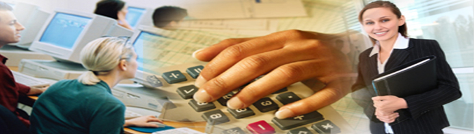 Accounting/Auditing Services
